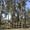 Земельный участок Мамадышский р-н п.Сухой Берсут  12соток #903520